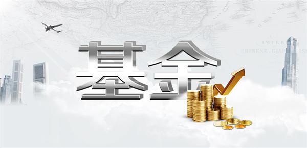 【QDII】股票里的术语QDII是什么意思?_股票术语[专业解释]